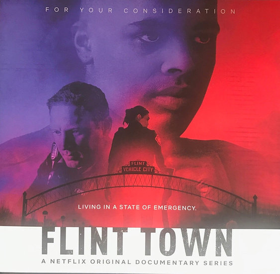 FYC 2018 FLINT TOWN Season 1-3 Episodes For Your Cofnsideration-Documentary DVD