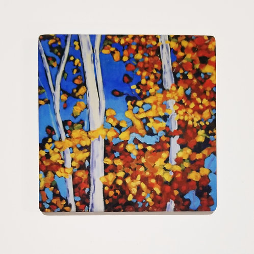 Autumn Birch Trees Coaster and Pot Holder