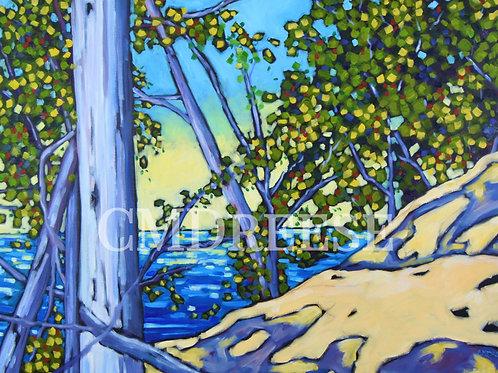 """Rosy's Outlook"" Lake Michigan Print"