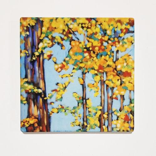 Autumn Birch Trees I Coaster and Pot Holder