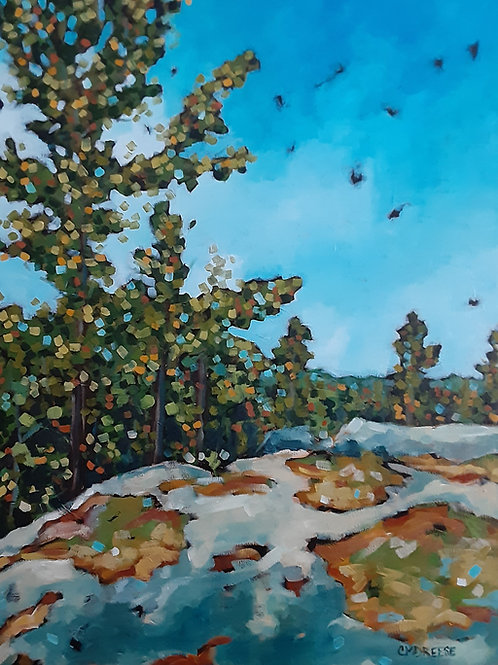 """The Land Beneath Us"" Original Oil Painting on Canvas by Christi Dreese"