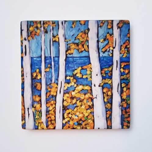 Birch Trees Coaster and Pot Holder