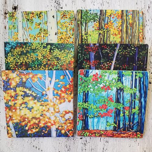 Seasons II Coasters