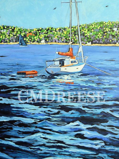 """""""Anchored"""" Sailboat Print"""