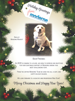 Shelley_Moderne_Christmas_TY_Flyer