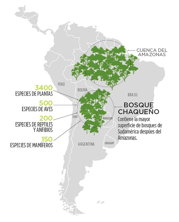 infografia-mapa-01.jpg