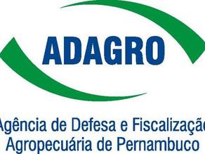 Adagro abre processo seletivo para Técnico em Agropecuária