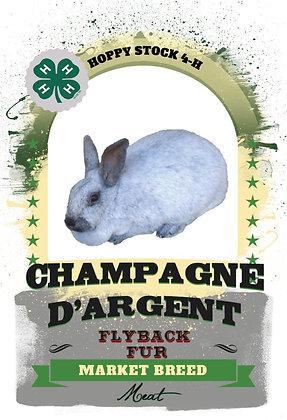 Rabbit BreedTrading Cards (2018-2019)