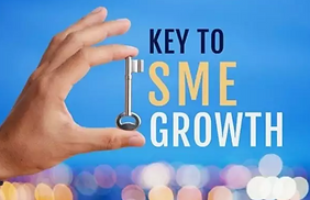 SMEs constitute 99% of businesses, generating 60% of employment and 50-60% of value-added. Unfortunately, SMEs lag in digital transitions and are disproportionately affected by market failures, trade barriers, policy inefficiencies, and institutional shortcomings. Learn to combat these factors and isntead, upscale for growth.