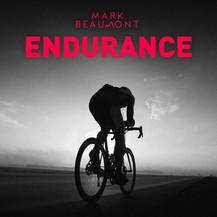 mb-endurance-3000x3000.jpg