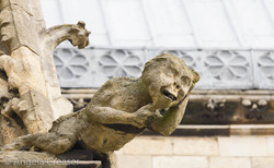 Gargoyle, Lincoln Cathedral, England