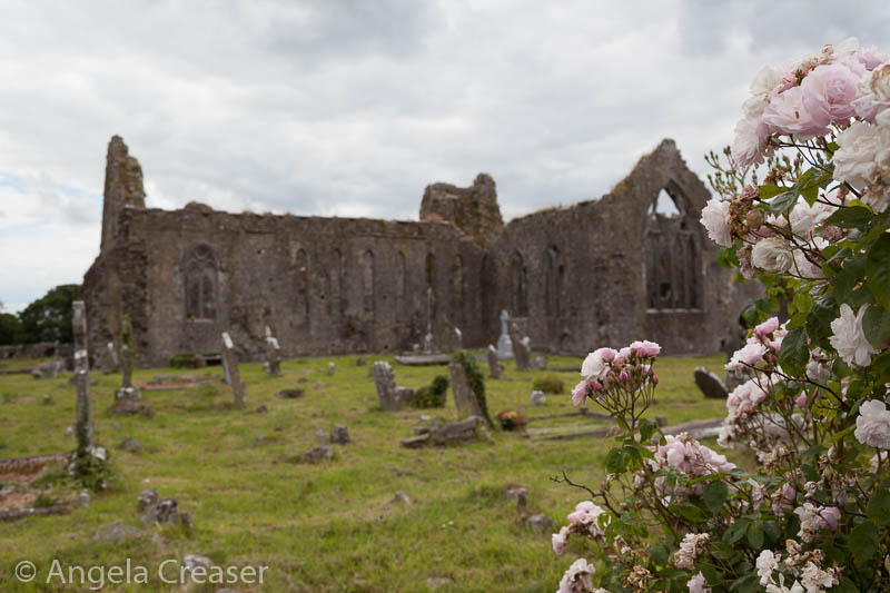 Athenry Dominican Priory, Ireland