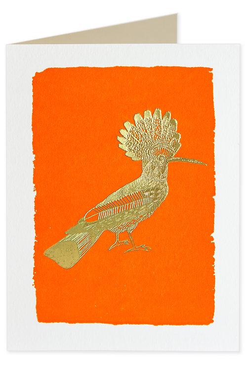Pack of 5 Notecards - Orange Hoopoe