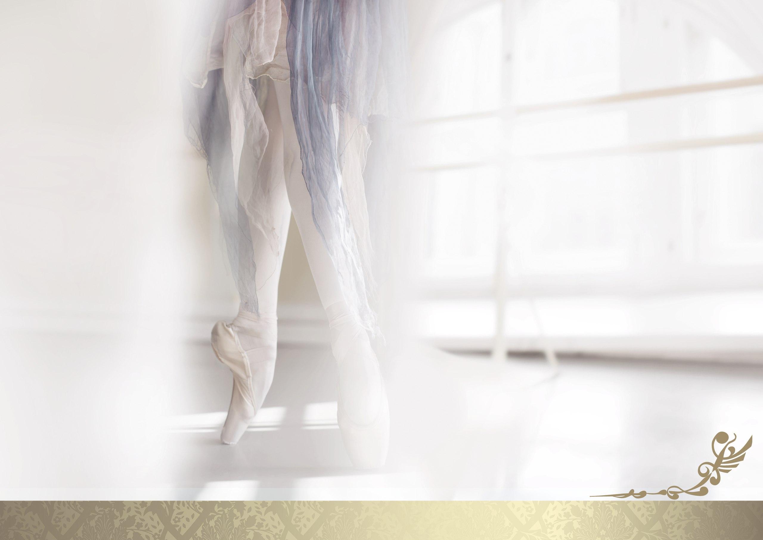 Академия русского балета 2014.jpg