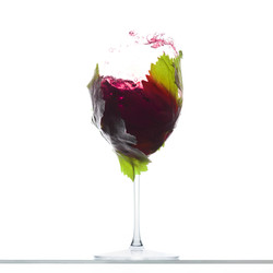 Wine_quadro_2300