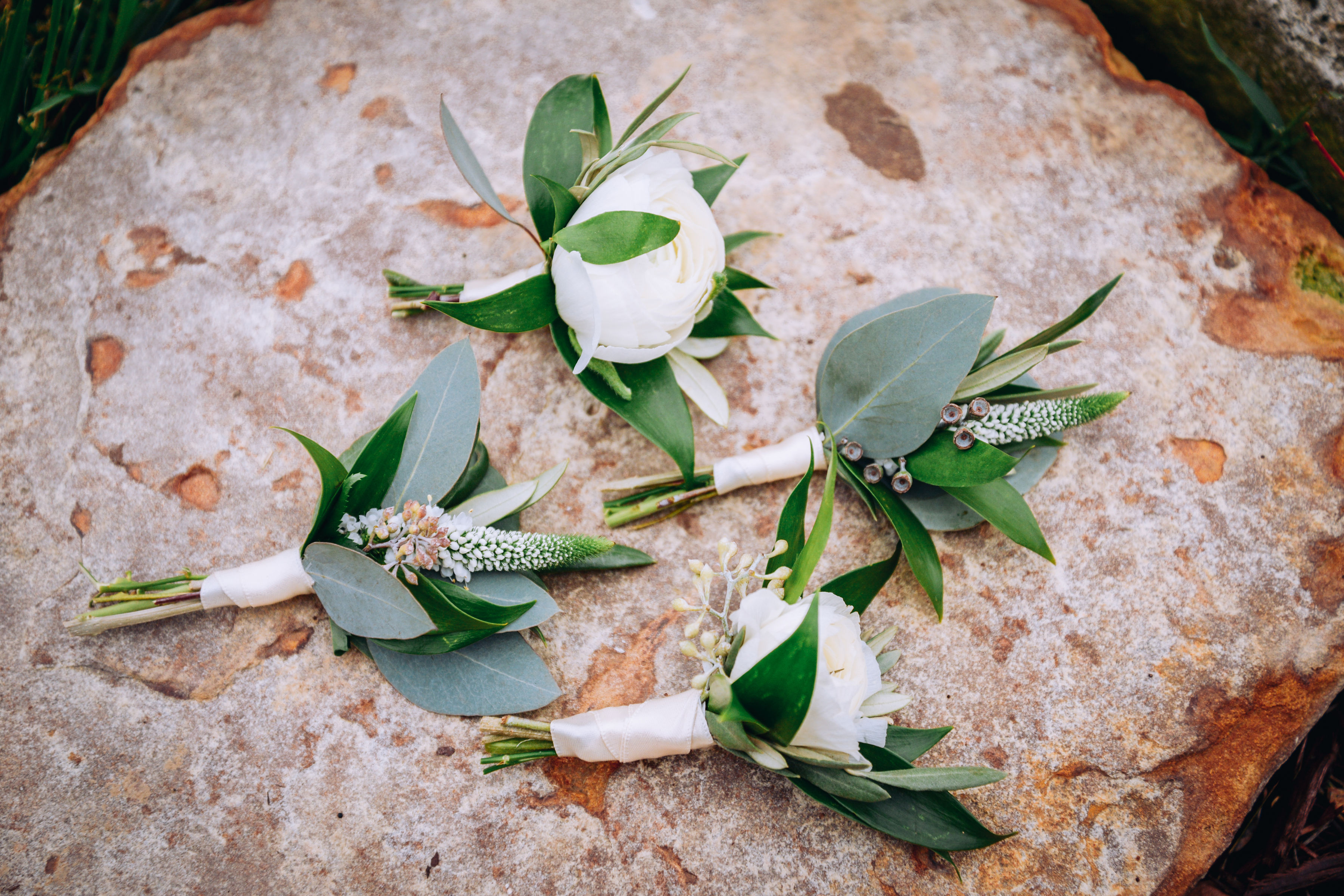 Groom and  Groomsmen Boutonnieres