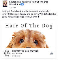 Dog groomer leamington spa