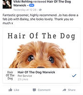 Dog groomer leamington