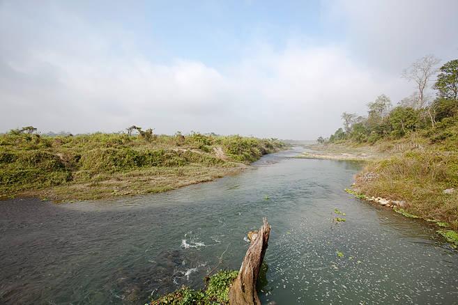 Chitwan.9Dec2011.jpg