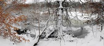 Bx.River.WCS.snow.20Dec08c.jpg