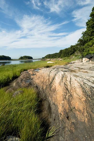 PBPK.Rocks.7July04h.jpg