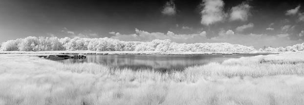 Marsh.Pano.25June2011.jpg