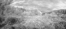 4Dec2008.River.WCSf.jpg