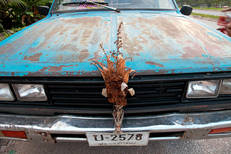 CarHood.Thailand2009b.jpg
