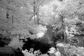Loch.18June2006.jpg