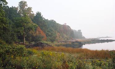 PBPK.Autumn1988.jpg