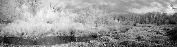 4Dec2008.River.WCSd.jpg