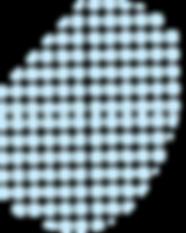 Circles (1).png