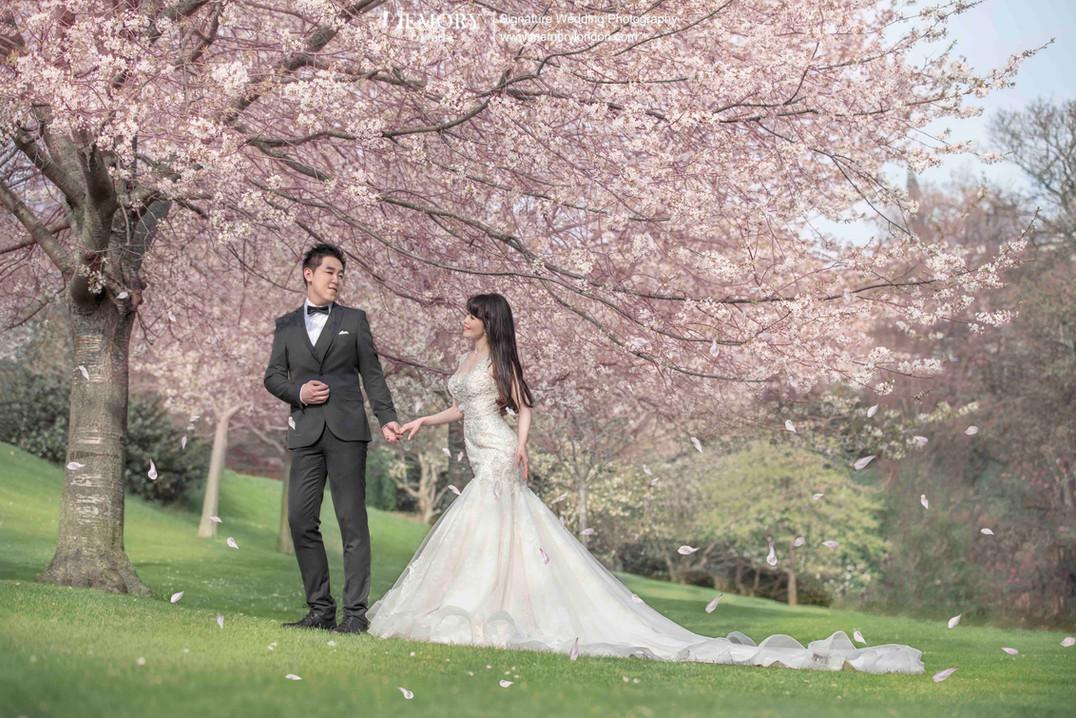 英国爱丁堡樱花婚纱照 苏格兰旅拍