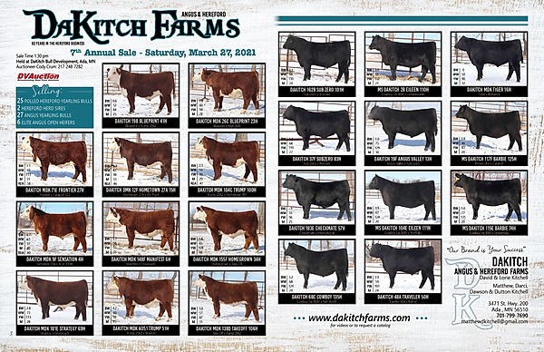 Dakitch 11x17 flyer March2021 (1).jpg