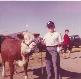 Dave's first Herfrd Heifer