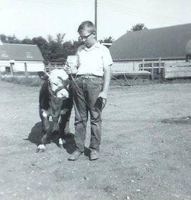Dave's Steer calf
