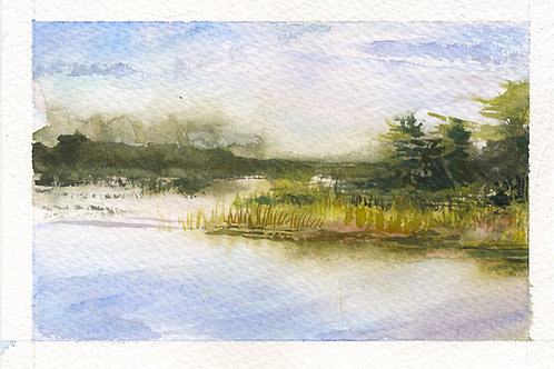 Grass Island, Fog