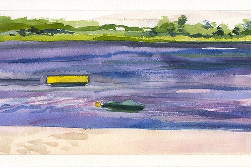 Kayaks 4