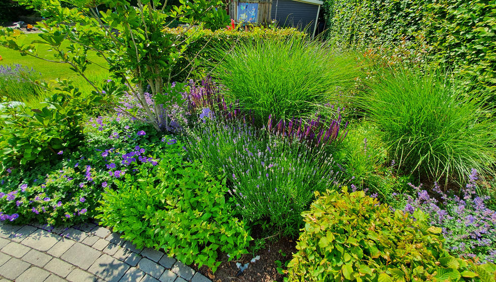 Inspiration Garten 014.jpg