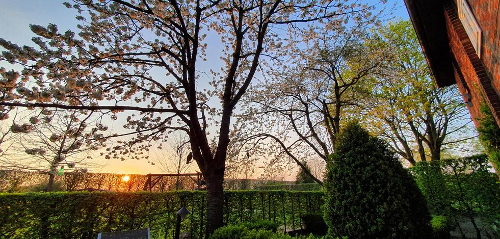Inspiration Garten 005.jpg