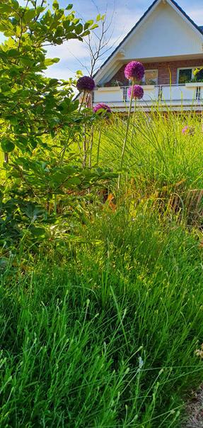 Inspiration Garten 010.jpg