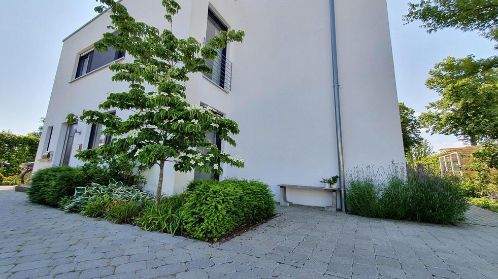 Gewerke Garten 018.jpg