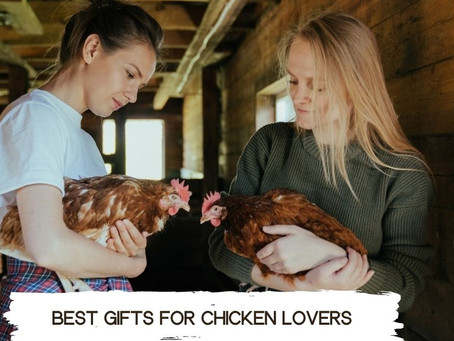 Best gifts for chicken lovers