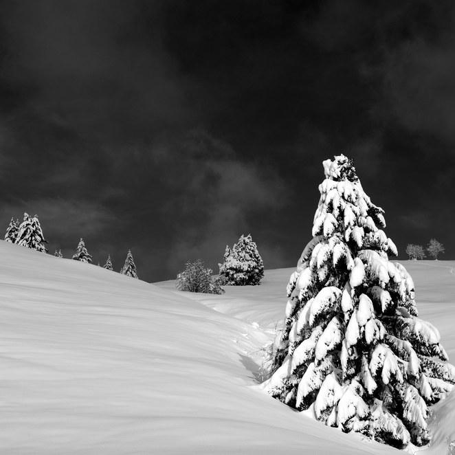 ZIG-SNOW2-020.jpg