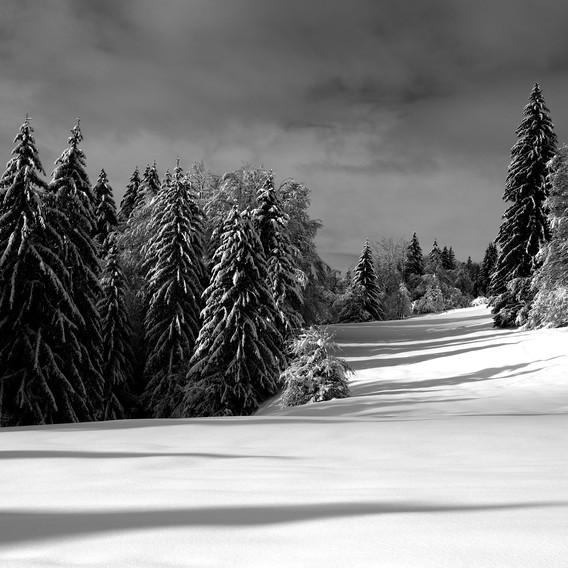 ZIG-SNOW2-008.jpg