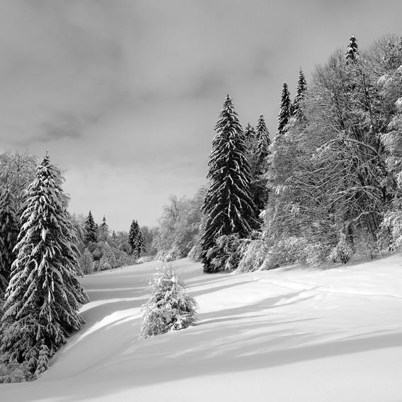 ZIG-SNOW2-005.jpg
