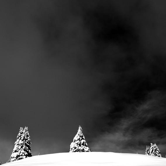 ZIG-SNOW2-016.jpg