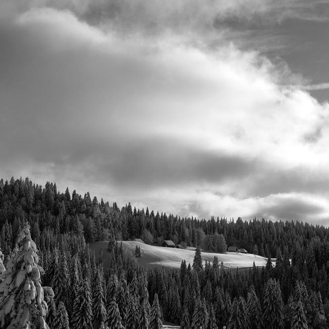 ZIG-SNOW2-019.jpg