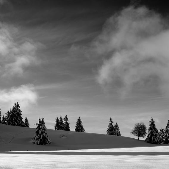 ZIG-SNOW2-015.jpg