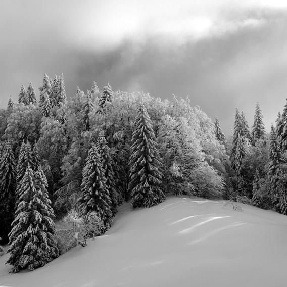 ZIG-SNOW2-006.jpg